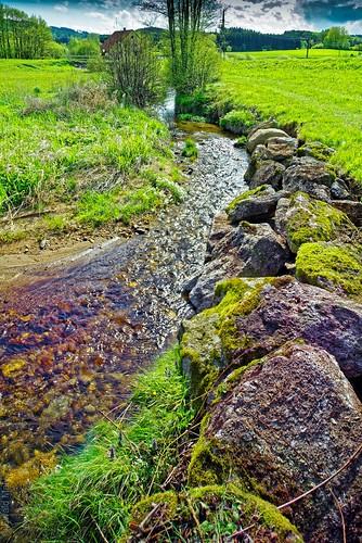 creek pic